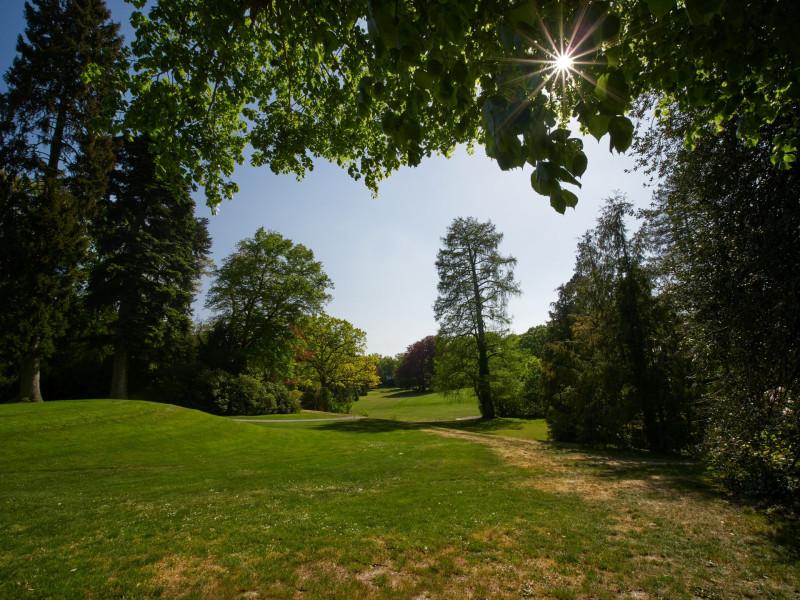 ein netter Park