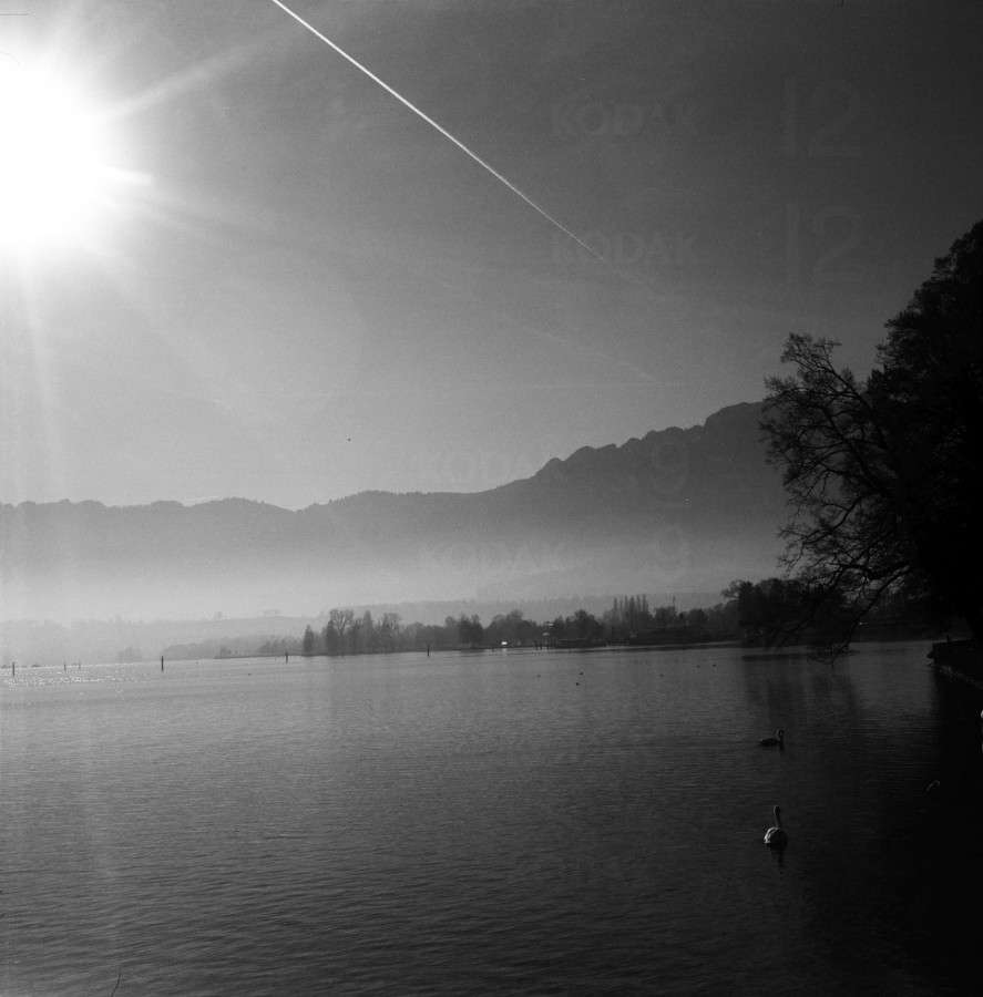 Thuner See