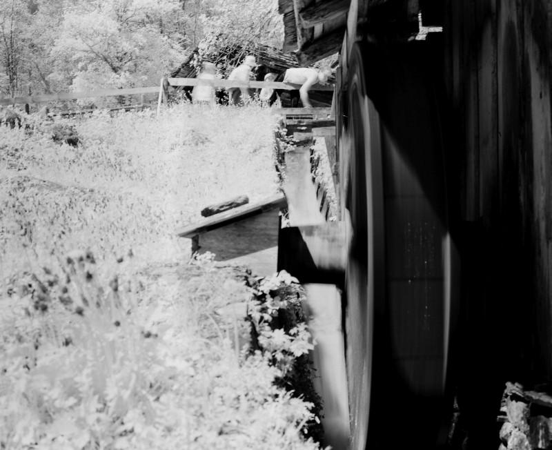 Infrarotfotographie auf Film — man kann damit tatsächlich Baumwolle unsichtbar machen. Im Sommer kann das witzig sein. Oder ein Horror ...