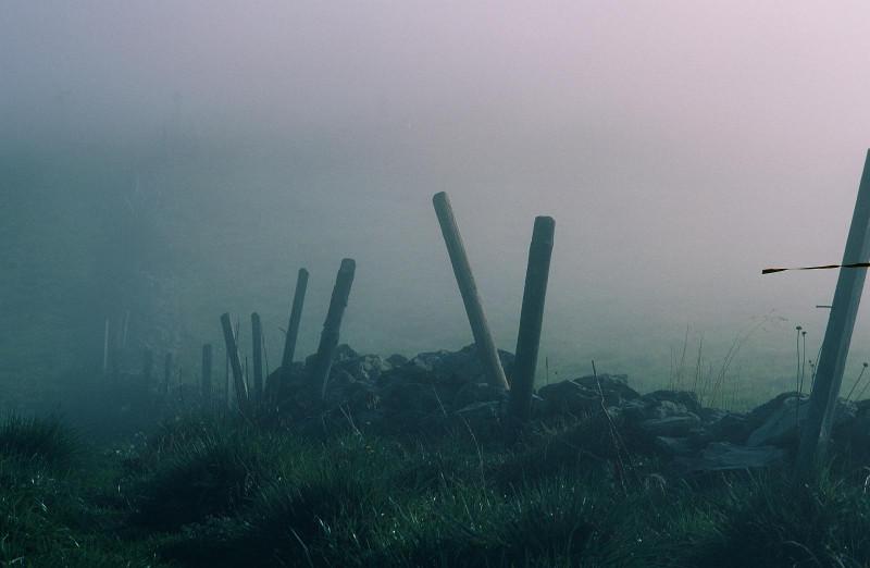 Im Nebel auf dem Güpfi