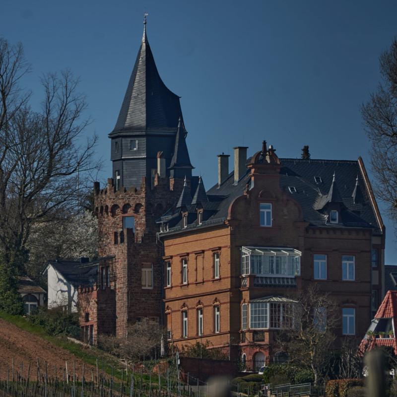 Eigentlich schon in Geisenheim: Das Weingut des Prinzen von Hessen (ich hätte vermutet, der Ort gehört eigentlich zu Nassau, auch wenn es <b>heute</b> Hessen ist)