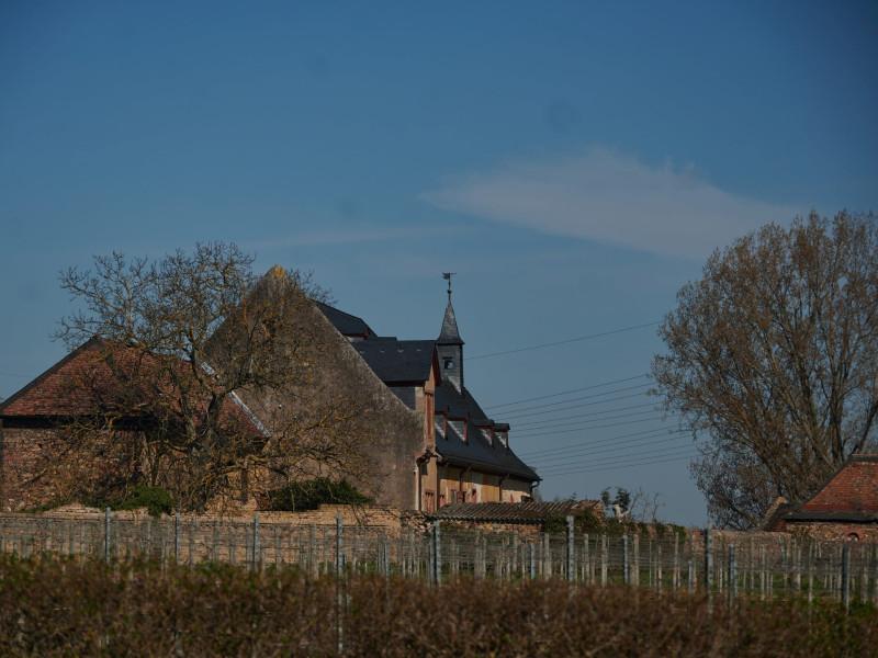 Sankt Georgs Klause Johannisberg (gegründet 1130, Gebäude von ca. 1600, Besitz der Grafen von Schönborn)