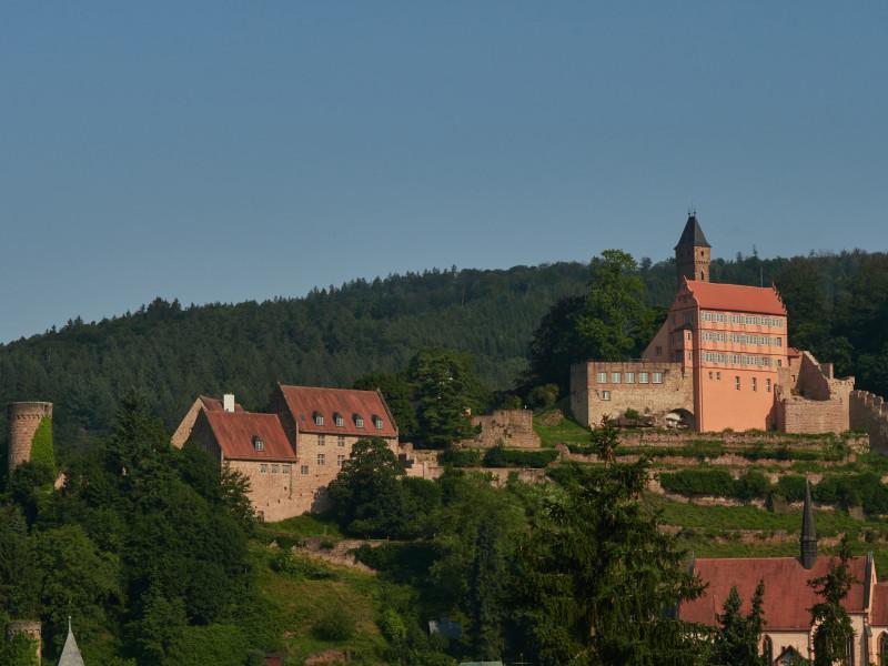 Die Burg/Schloß Hirschhorn