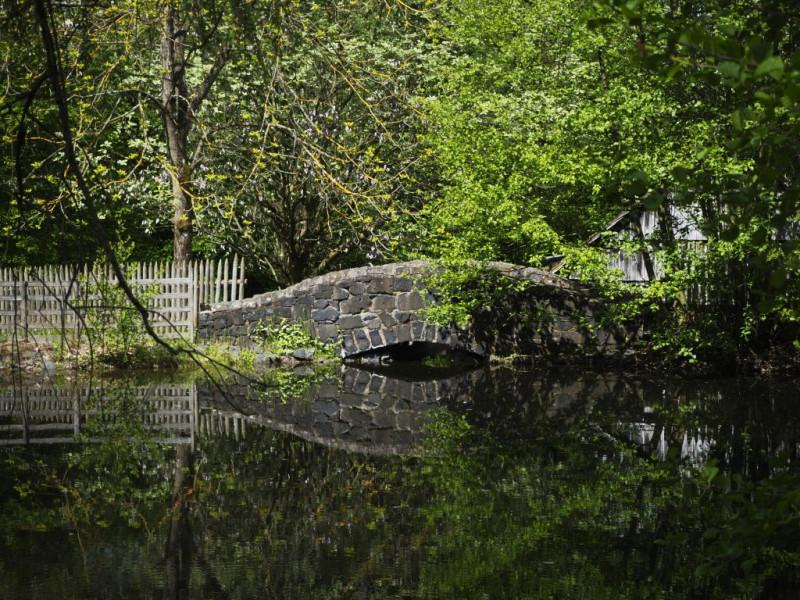Brücke im Hessenpark