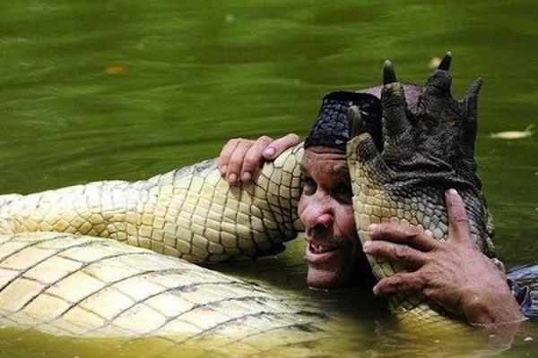 Krokodil-i-chelovek-2