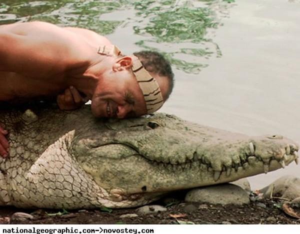 Krokodil-i-chelovek-3