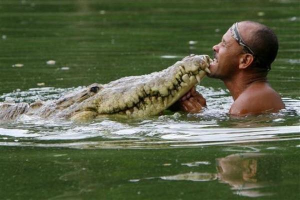 Krokodil-i-chelovek-6