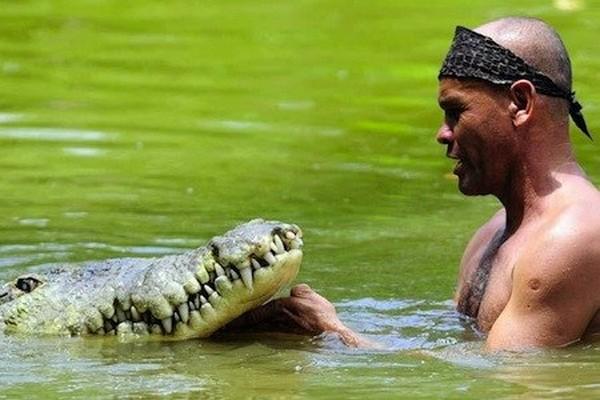 Krokodil-i-chelovek-5