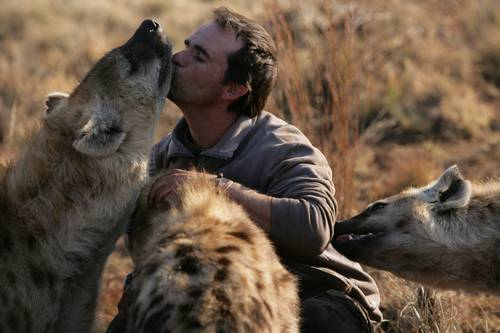 Kevin_Richardson_with_hyenas