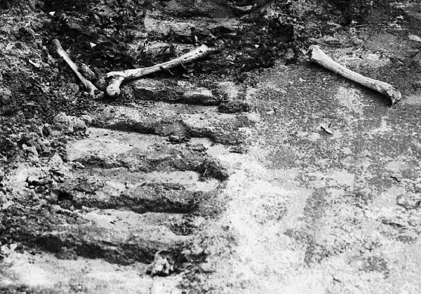 Кости в Бабьем Яре, 1961. Фото: Э. Диамант