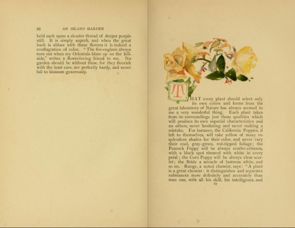 Image of pp 86-87 of the illustrated edition of Celia Thaxter, <i>An Island Garden.</i> Link leads to the page-turning interface on The Internet Archive, from which an accessible text edition may also be downloaded