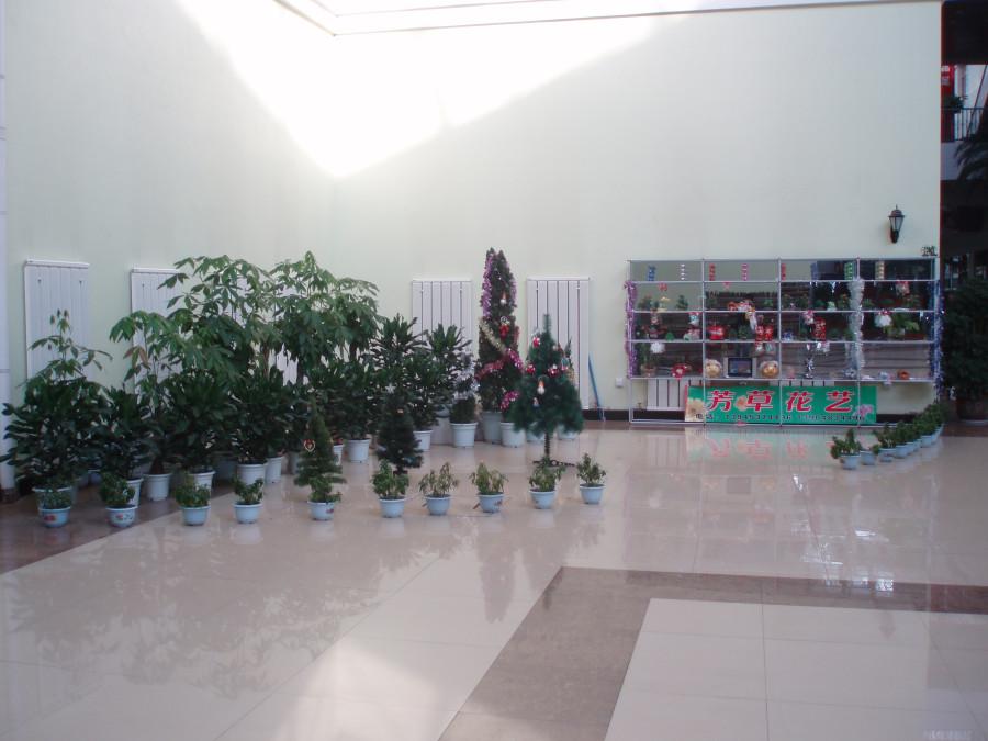 Центр в Суйфэньхэ
