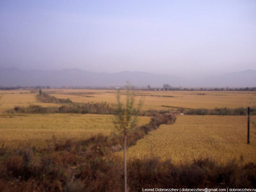 Бескрайние поля в Китае