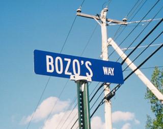 Bozo's Way