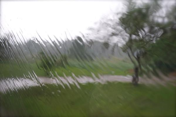 Лил июльский дождь…