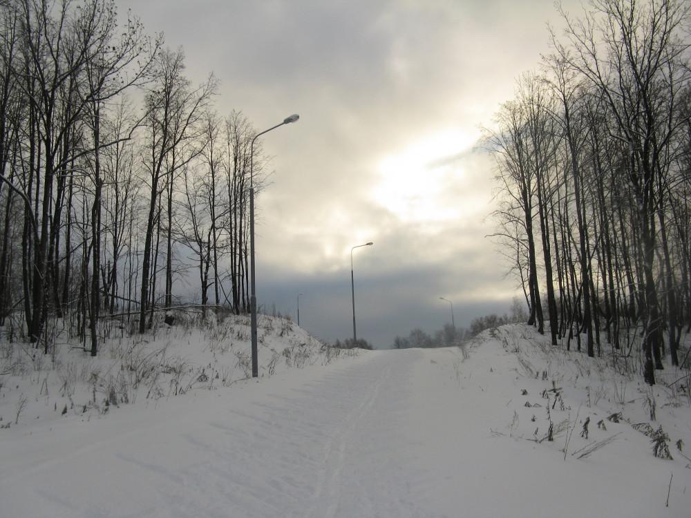 Роллерка зимой