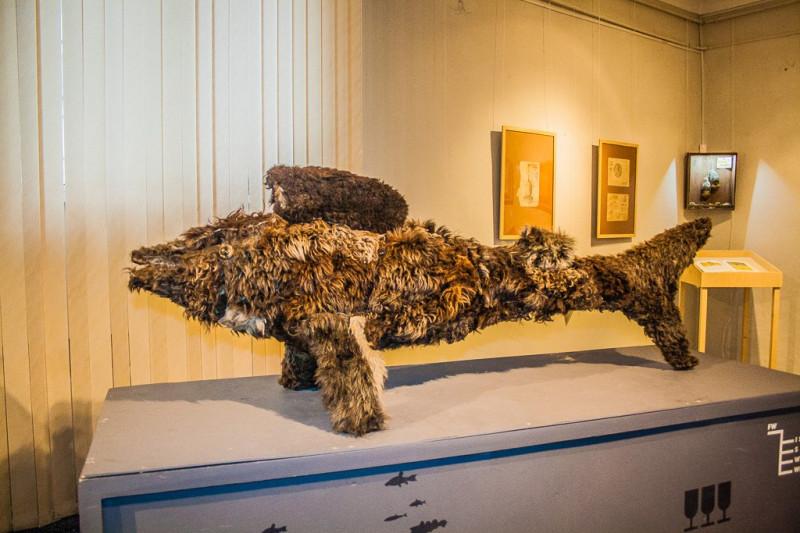 Чучело шерстистой рыбы (краеведческий розыгрыш на выставке «Ниже Нижнего», 2014)