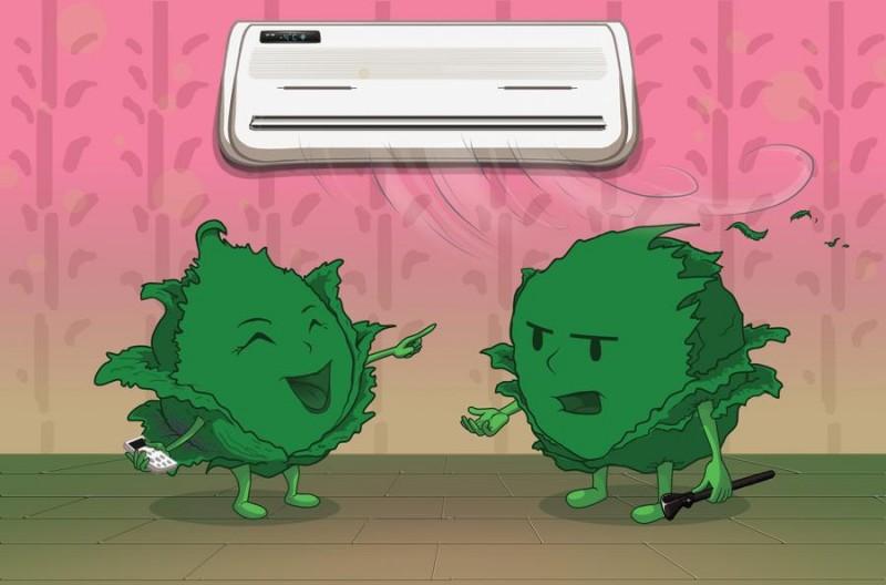 Cabbage argument (иллюстрация: deviantart.com)
