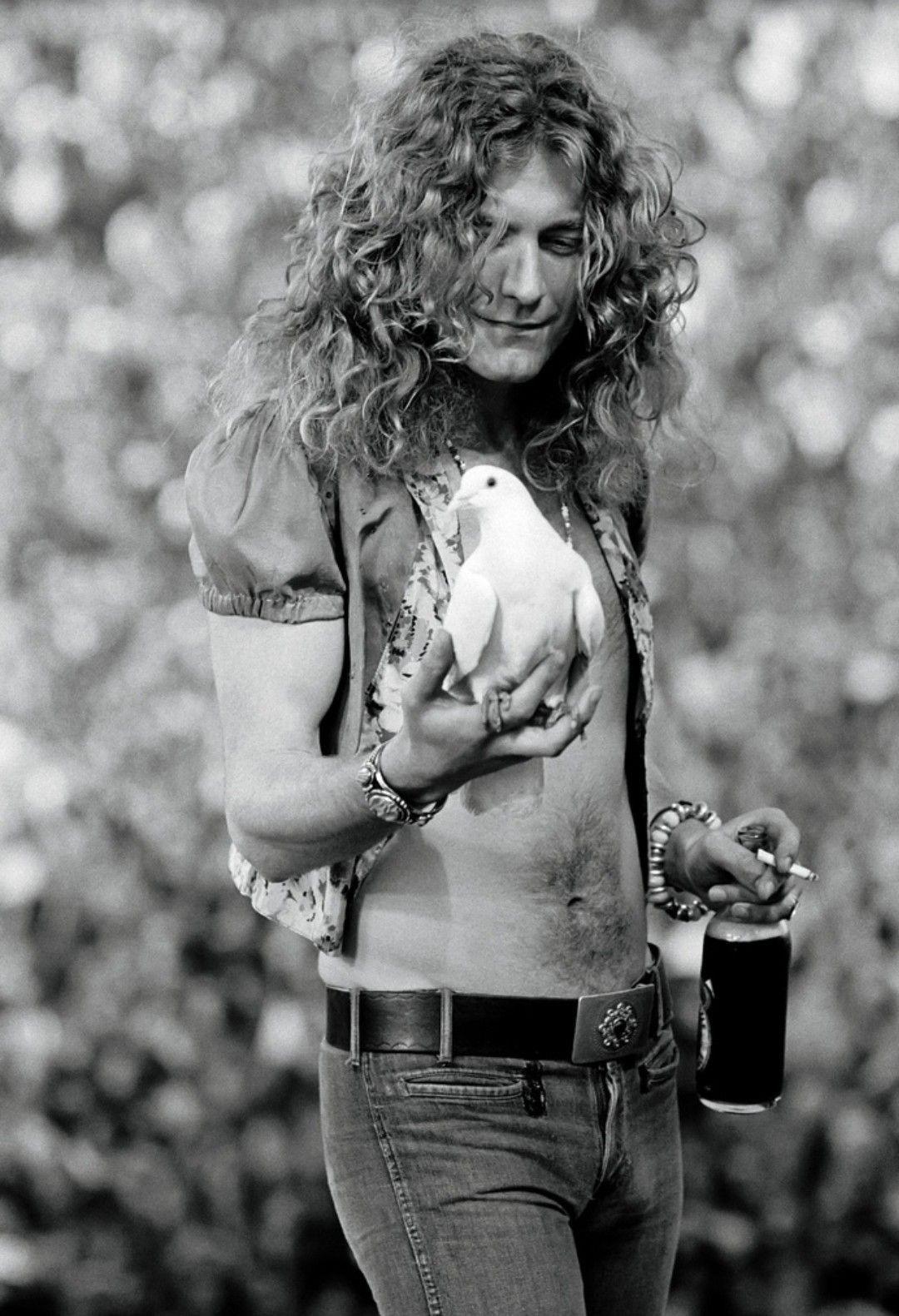 Роберт Плант, Сан-Франциско, 1973 (photo © Neil Preston)