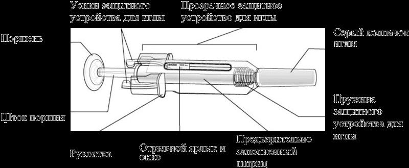 Стандартный шприц в разрезе
