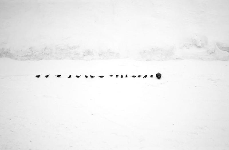 «Многоточие» (фото Алексея Бедного)