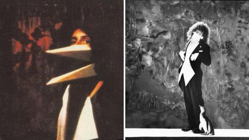 Брайан Мэй: образ пингвина в I'm Going Slightly Mad как кросс-референция на аналогичный образ, созданный для фотосессии Дугласа Паддифута 1972 года