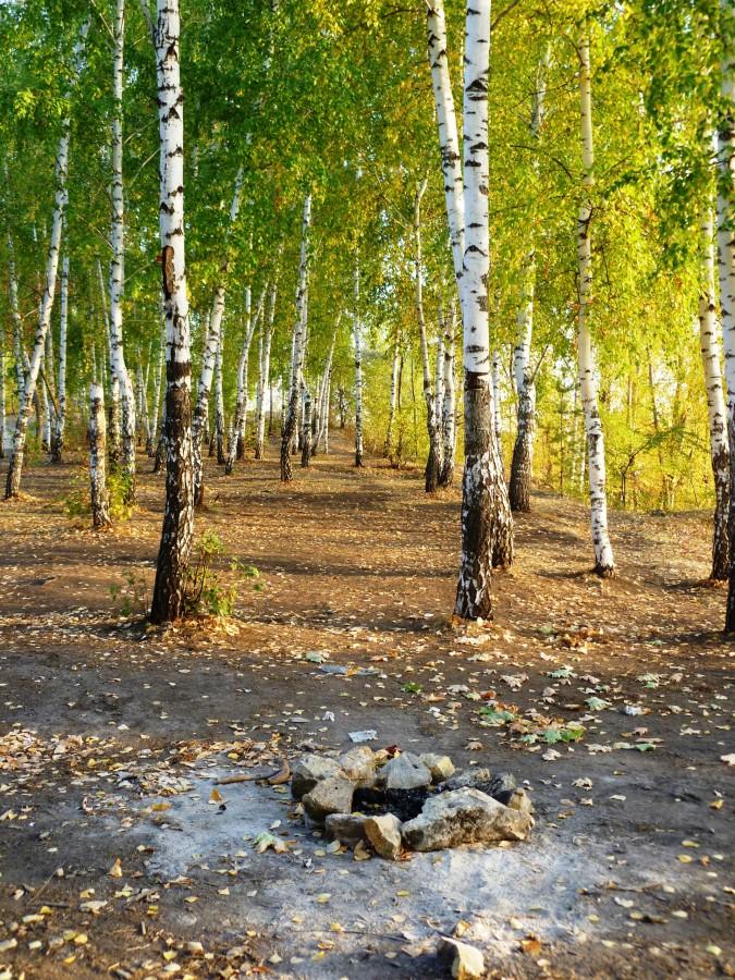 Картинки природа курганскую область