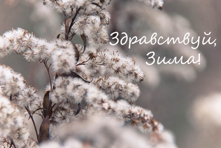 04-metyolki3