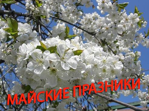 майские