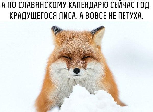 _EfAbx-PVOA