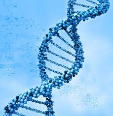 ДНК ИЗ БИСЕРА