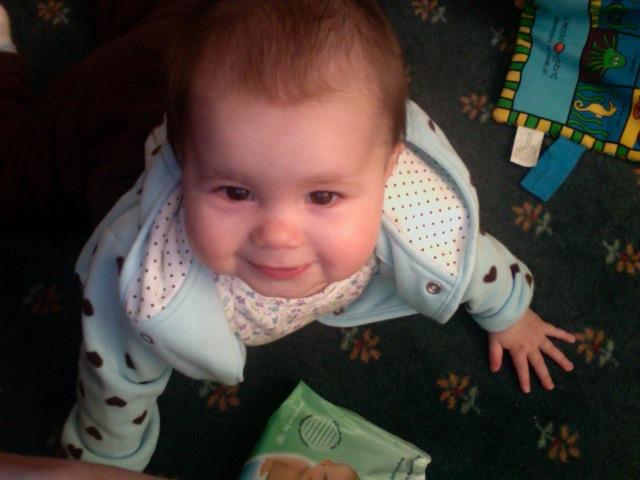 Rosebud, crawling, age 9 1/2 months