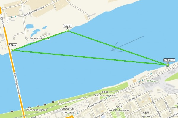 Схема разброса пловцов на 2GIS.jpg