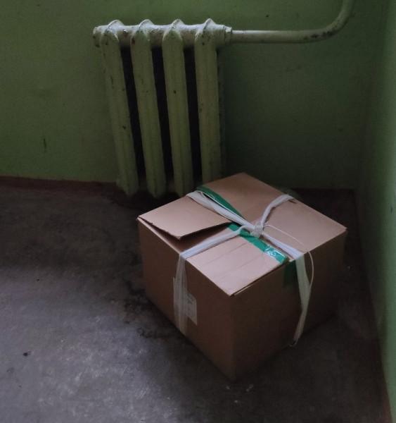 Коробка с котятами.jpg