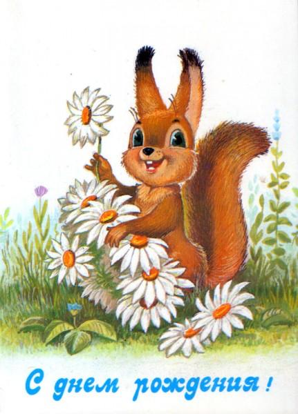 Советская открытка С днем рождения белка с ромашками автор Владимир Иванович Зарубин.jpg