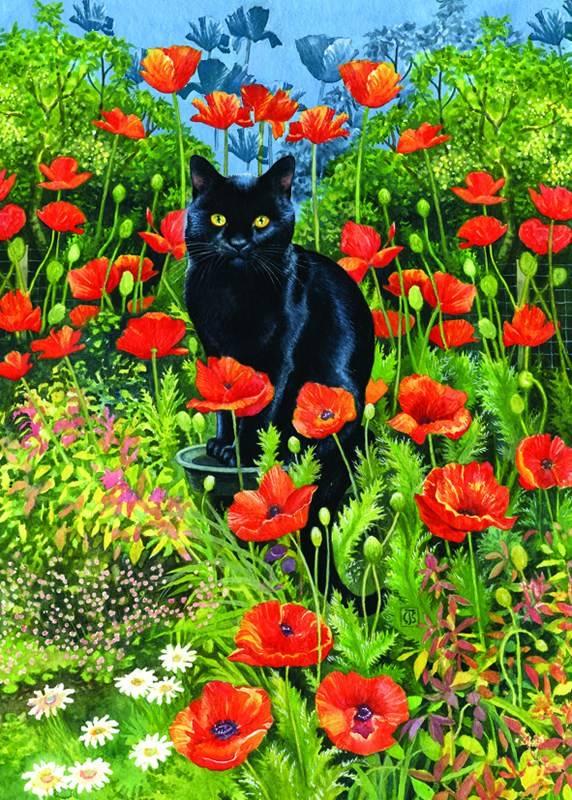 «Чёрный кот», Крисси Снеллинг