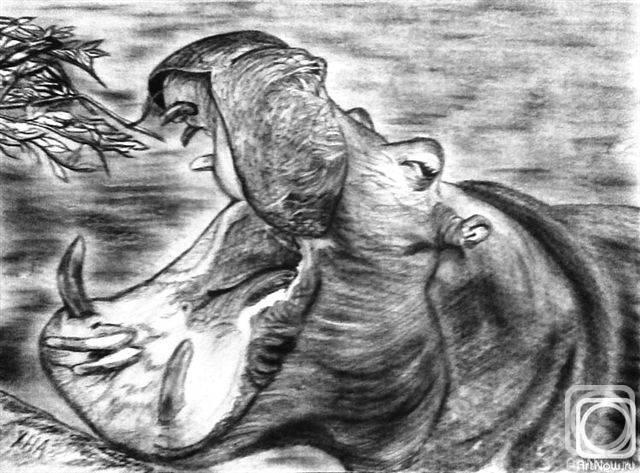 «Сафари. Бегемот», Наталия Хубеджева