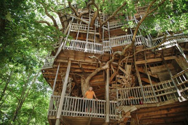 tree-house_4.jpg