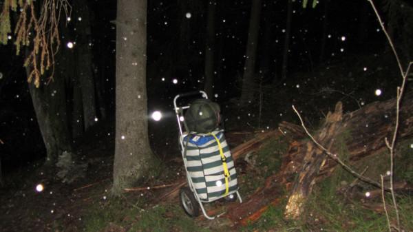 первый снегопад А6нет
