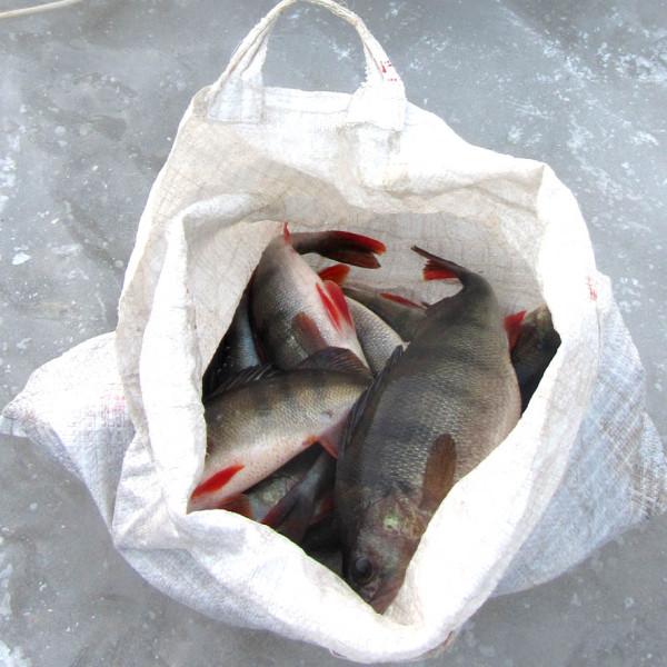 рыбалкин улов А6нет