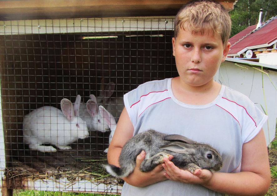 кроликовод А6нет