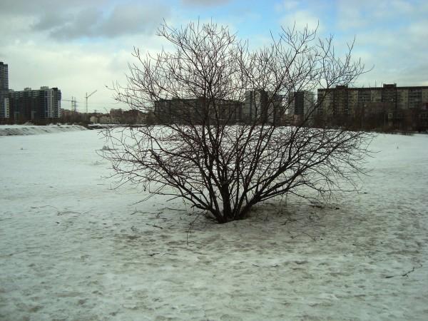 март озеро1