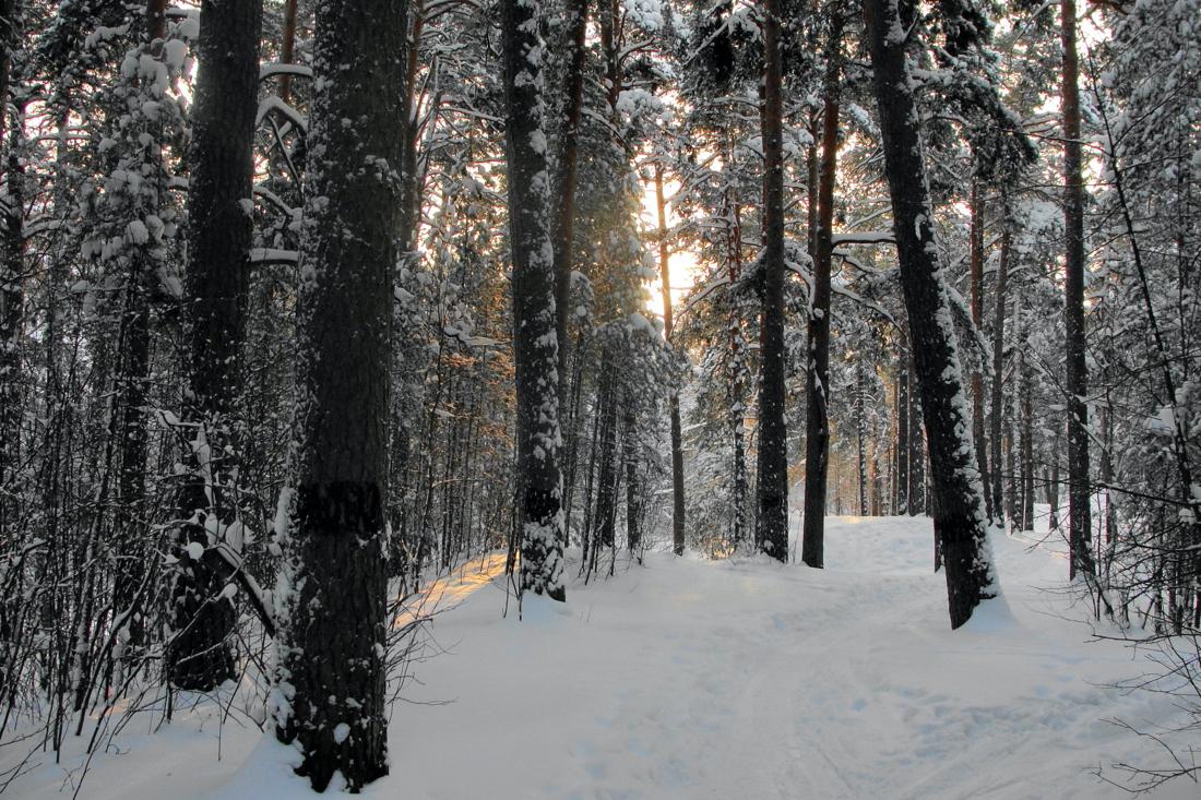 Пошла в лес помолиться голенькой