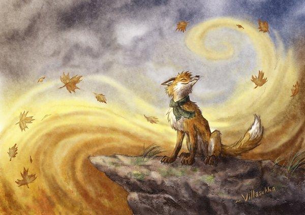 ветер и листья