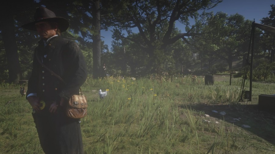 Red Dead Redemption 2_20181027214756