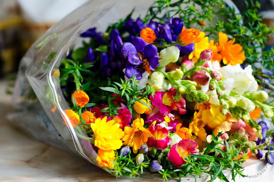Цветы фото лето