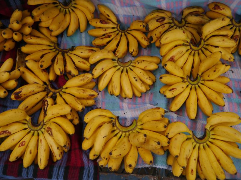 Мои любимые, banana datil