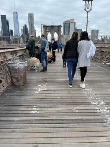 Люди и собаки. Возле уличного продавца картин. На них опять же Он - Бруклинский мост. В самых разных видах. Даже с котиком есть.