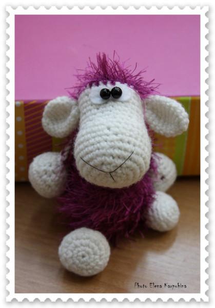 IMG_7718 овца алла