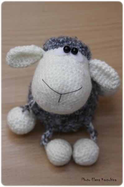 IMG_3121 овец веб